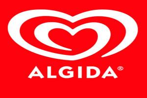 Algida Kayseri - Çatı Isıtma Sistemi - Kayseri